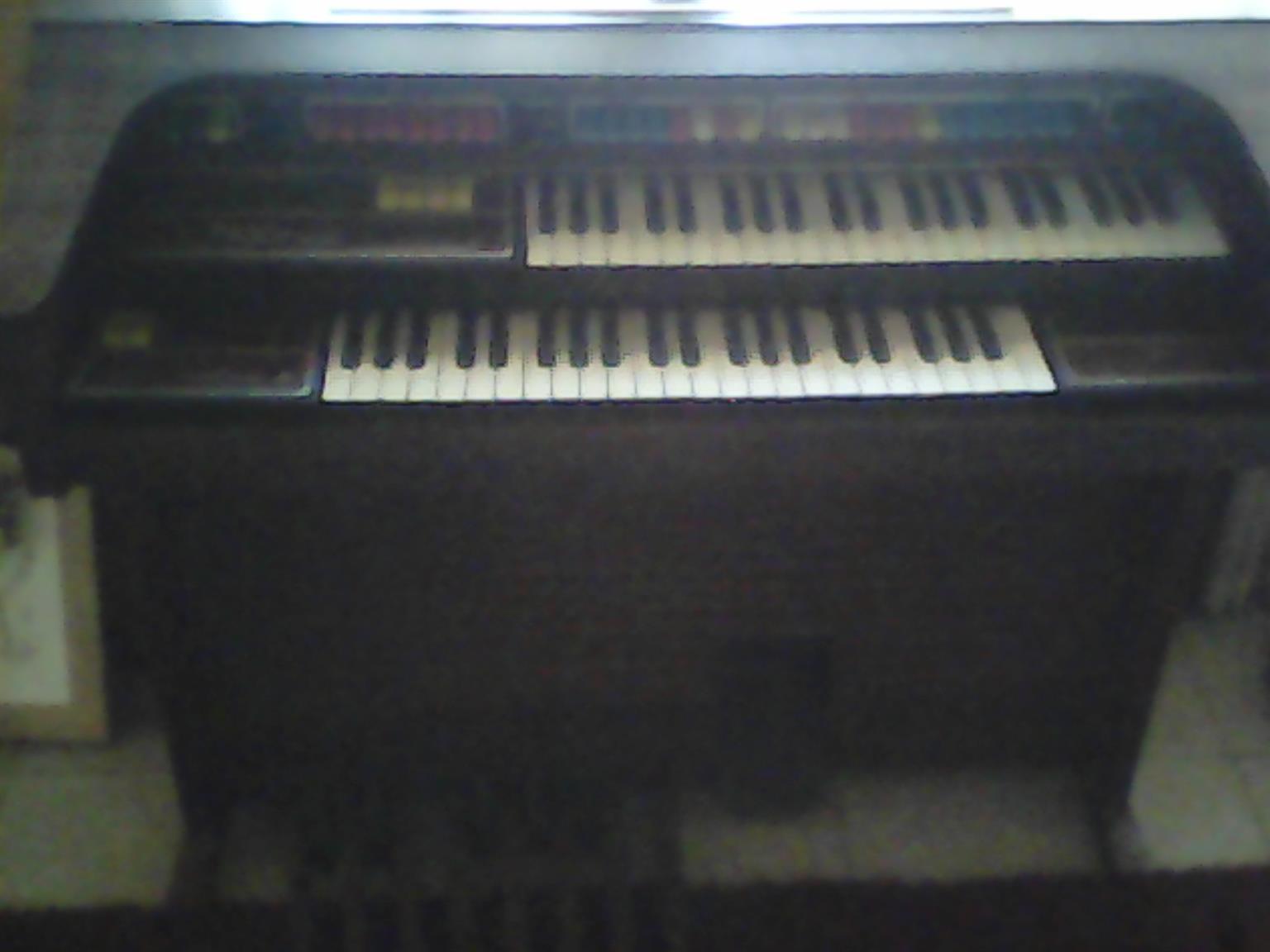 Thomas Playmate Organ