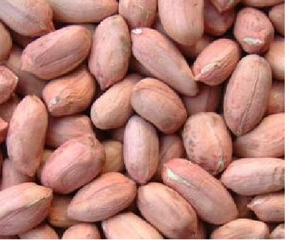 Groundnuts Spanish types 80/100