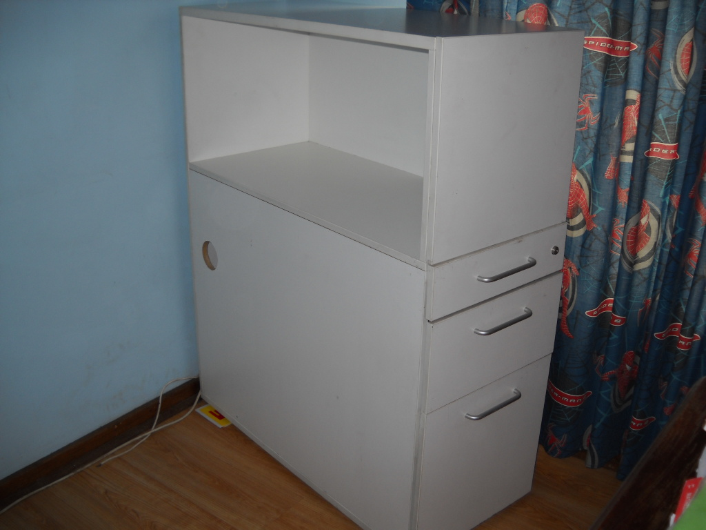 Bookshelf And Filing Cabinet All In One
