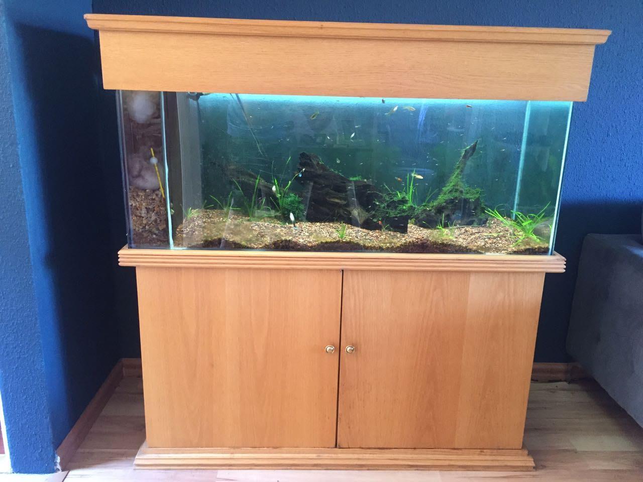 Fish Tank 220 litre