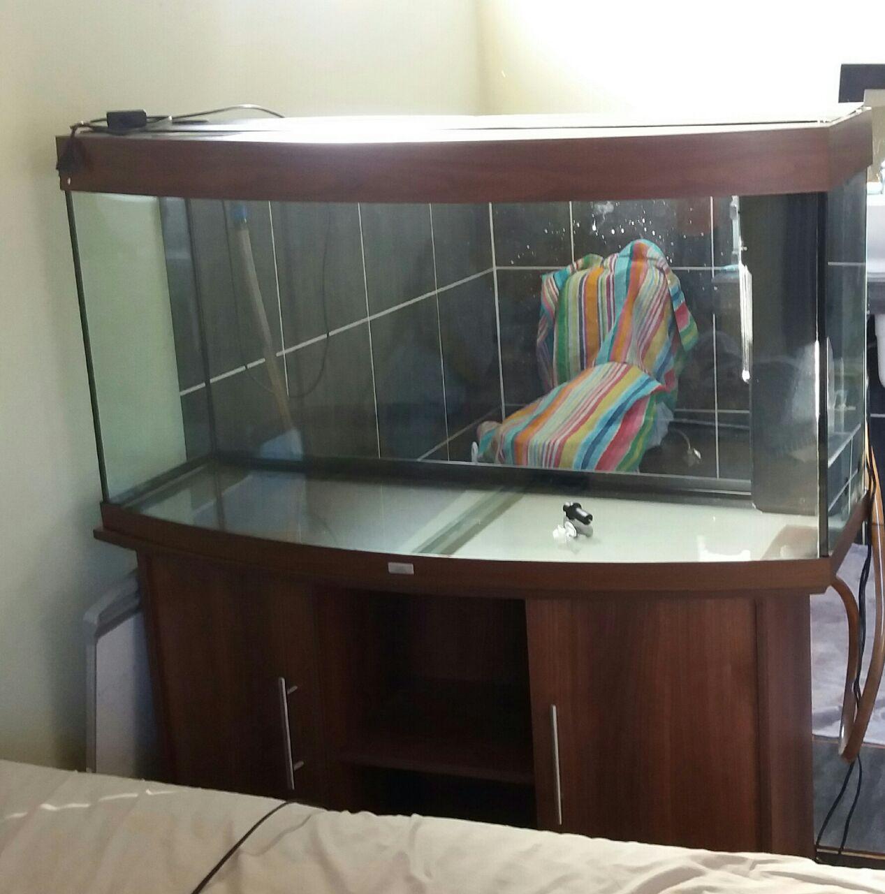 Jewel Curve 260L Fish Tank for Sale