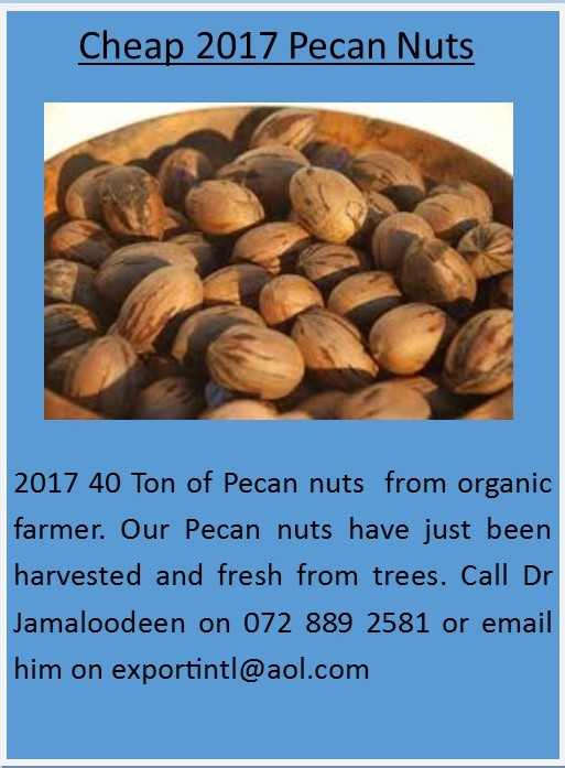 Pecan nuts for sale in Newcastle