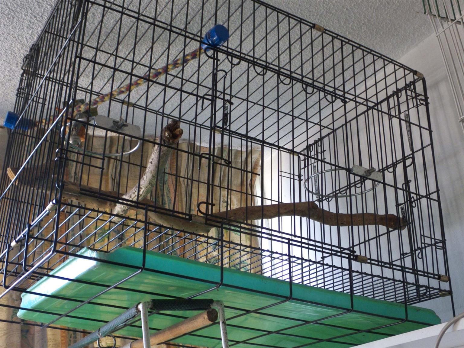 Bird cage, fold up, sells for R2000 at the pet shops