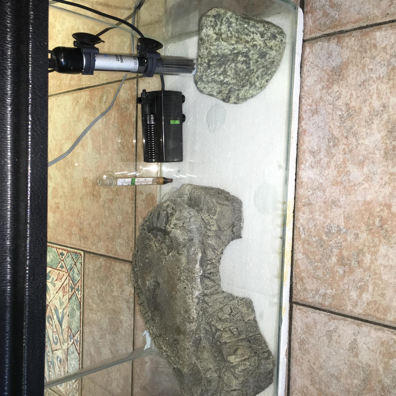 Complete Fish Aquarium