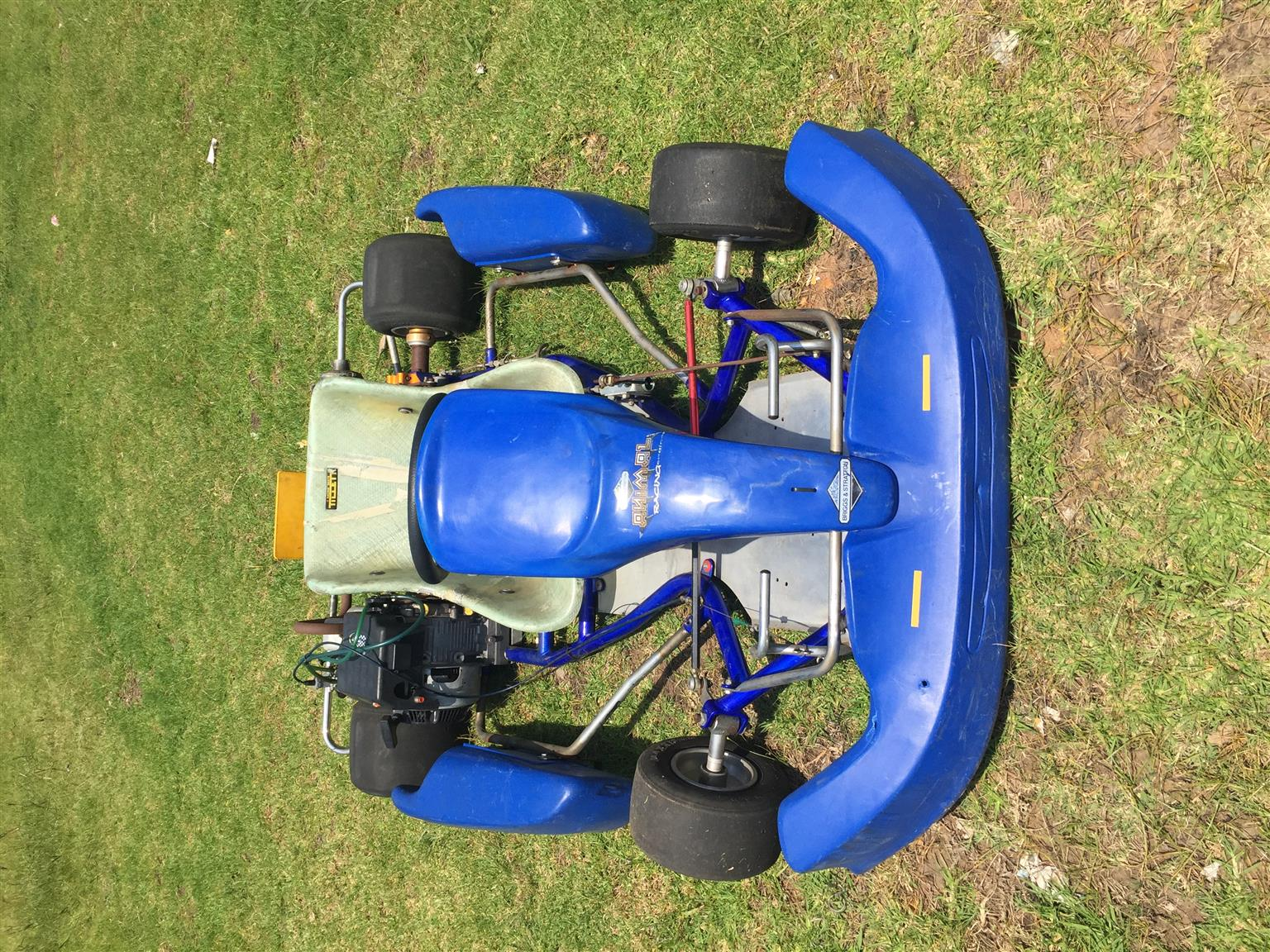 Briggs and Straton Racing Go kart,CRG Frame | Junk Mail