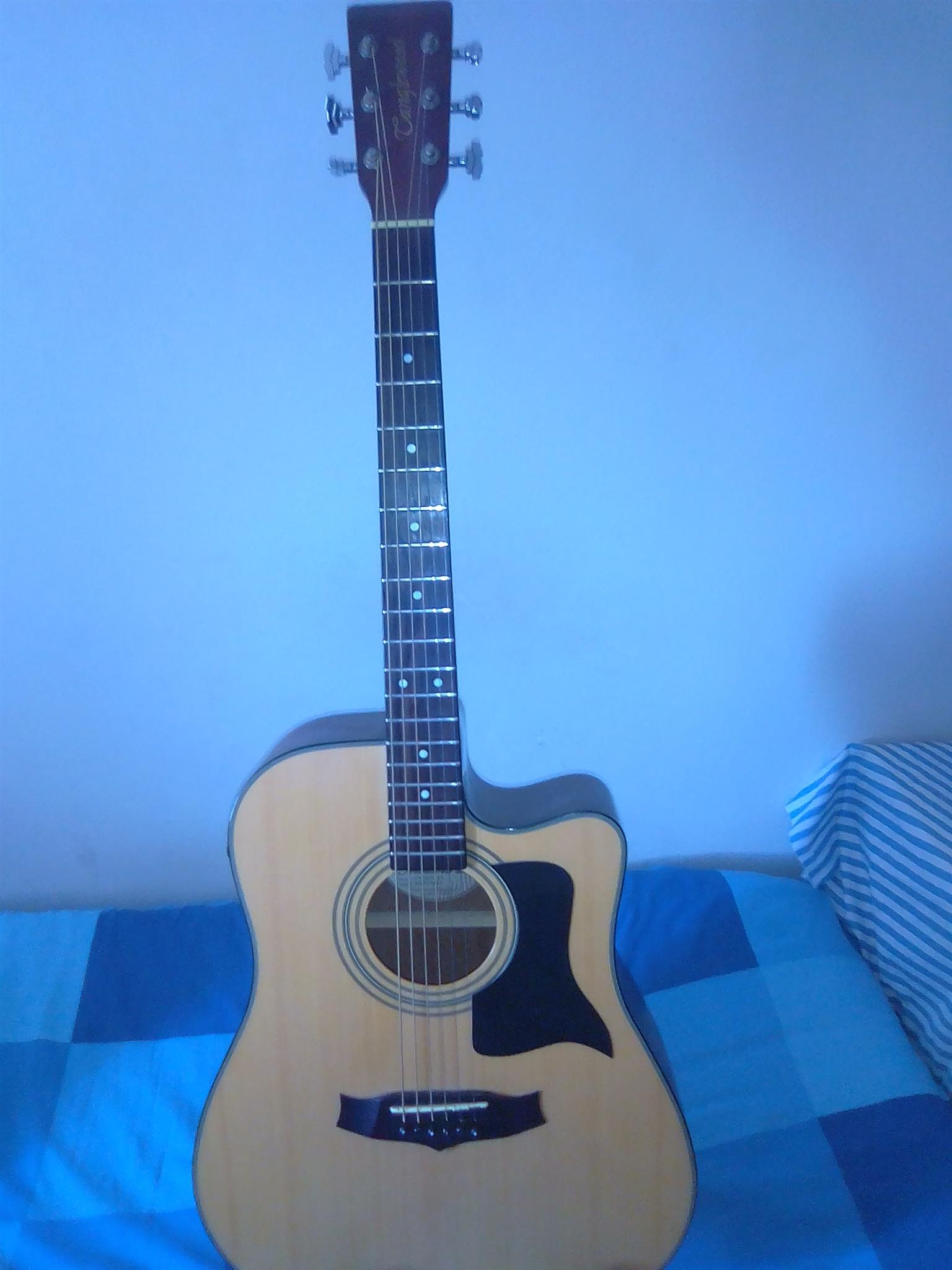 Acoustic Guitar Langlewood Tw 28