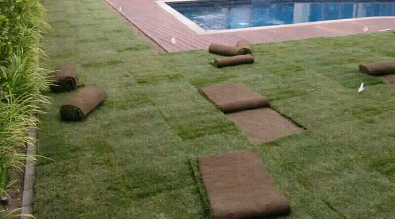 roll on instant grass lawn and stone pebbles suppliers