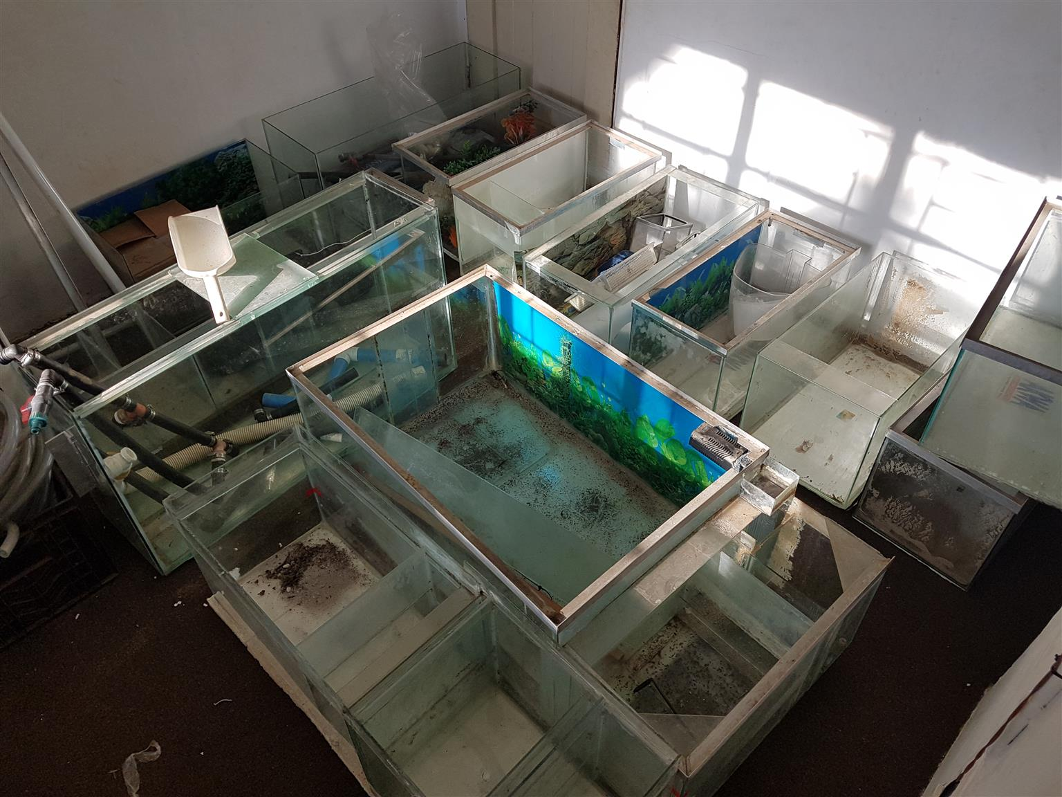 Various aquariums and equipment for sale