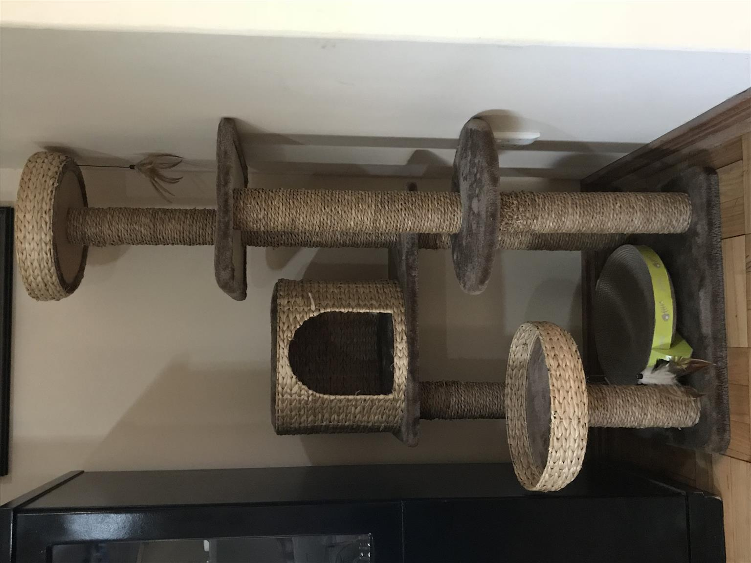 Cat stand for sale