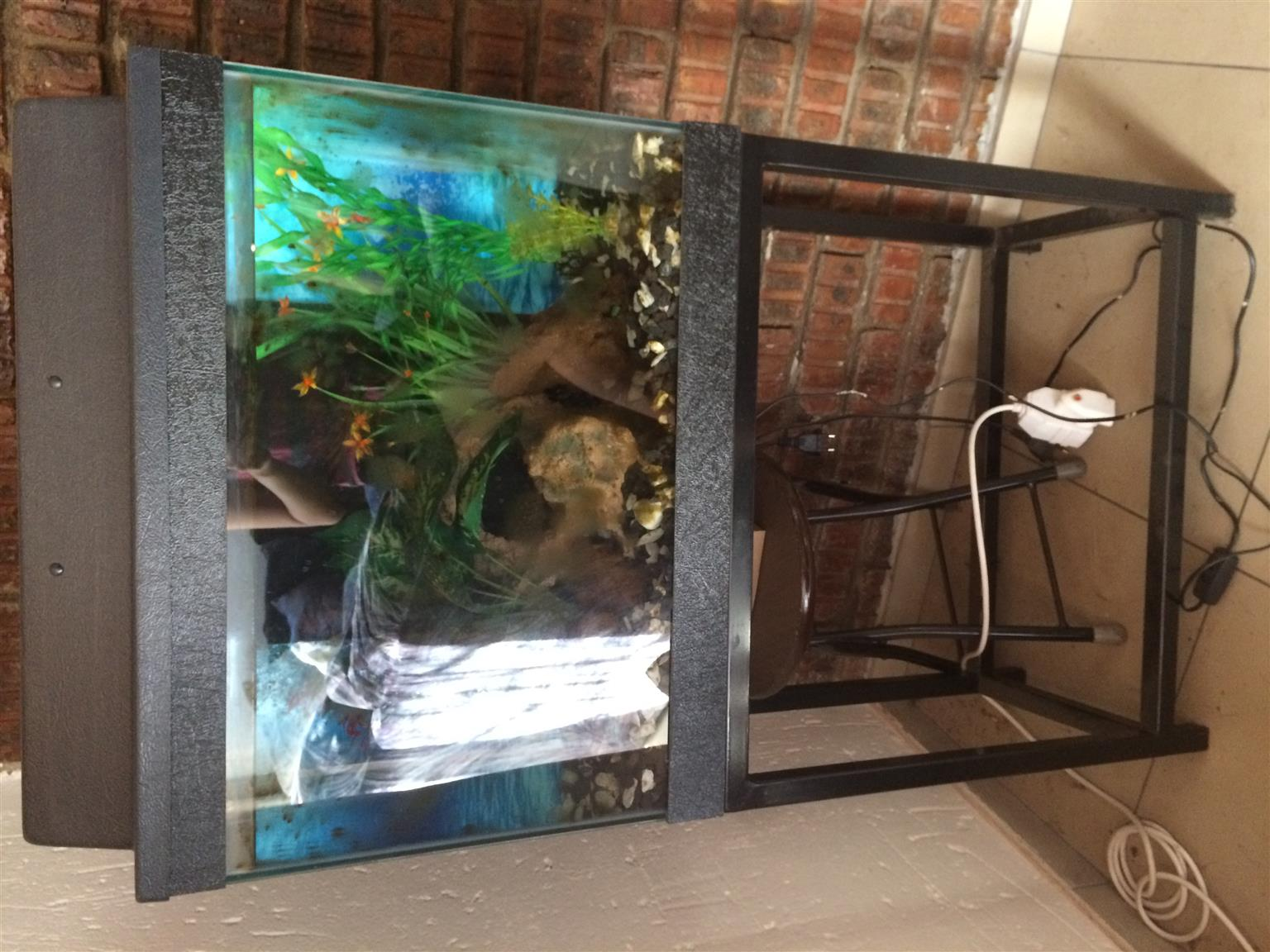 FULLY EQUIPED SELF-FILTERING TROPICAL FISH TANK