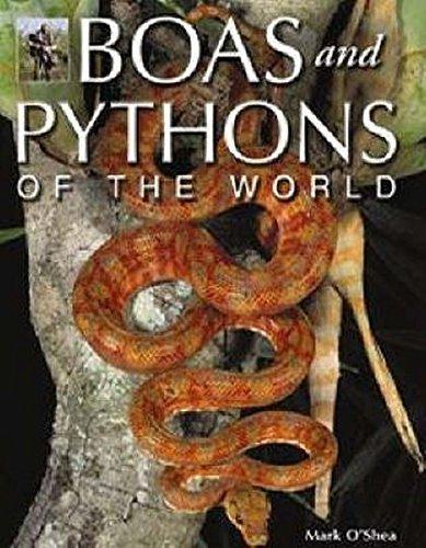 Boas and Pythons of the World, Mark O'Shea (20% Off)