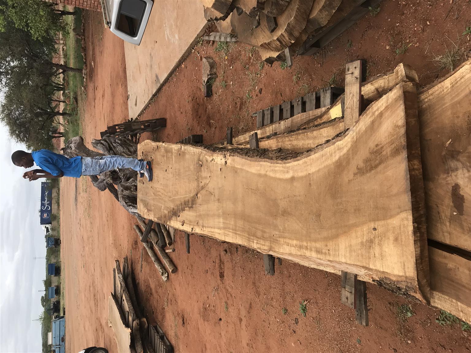 Sand kiaat wood slabs! 5m & 3m