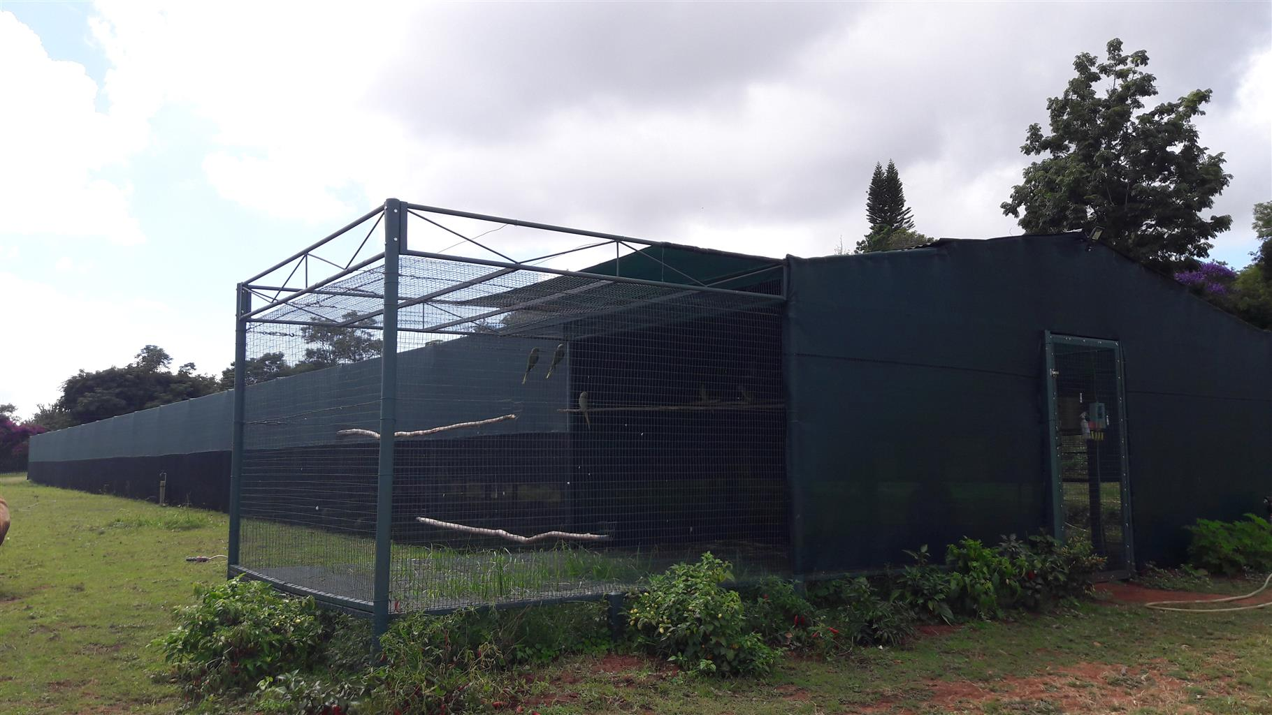 Complete bird cage units for sale