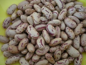 Sugar Beans for sale in Bulk