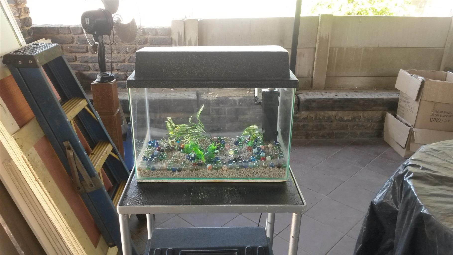 2 fish tanks on stand