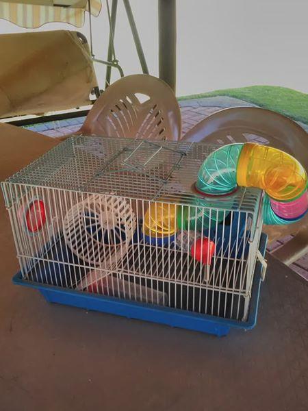 Hamster hok