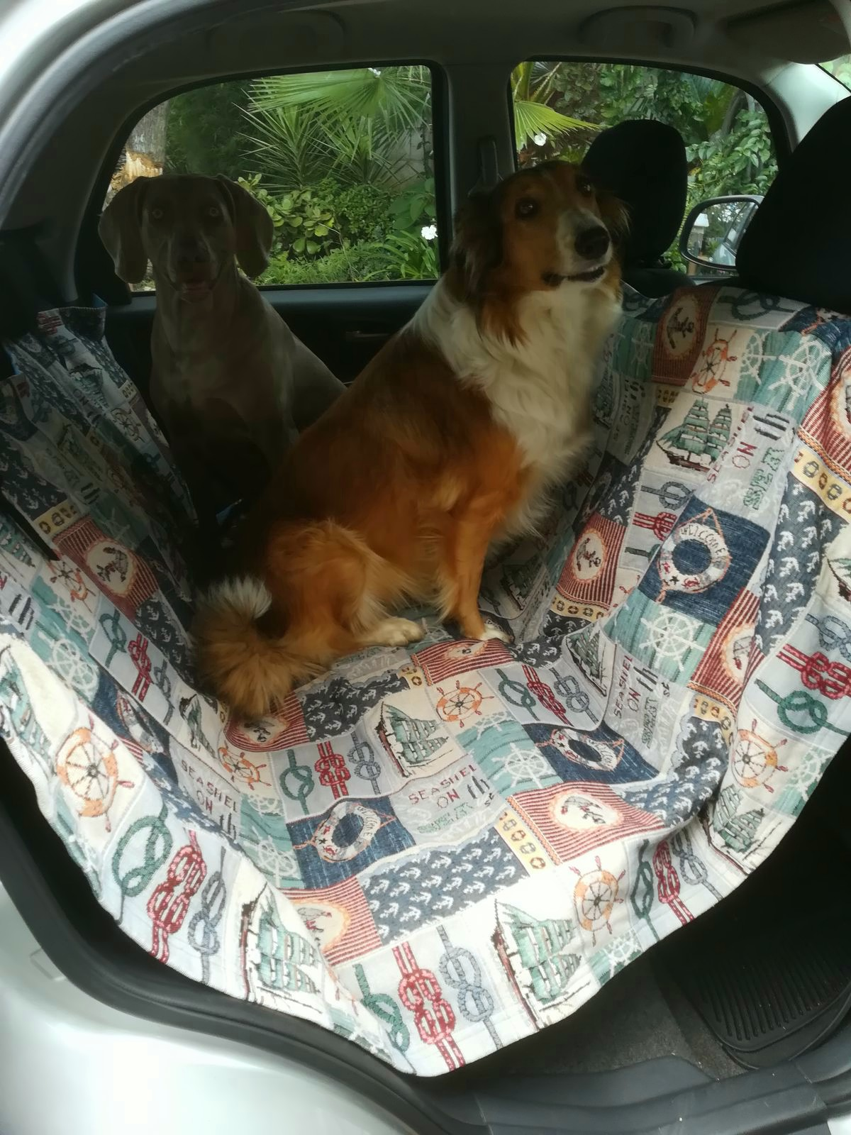 Car dog covers for sale