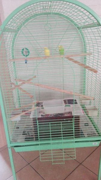 Parrot/Macaw/African Grey cage