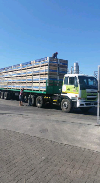 Nissan UD 440 Truck and TRAILER for sale