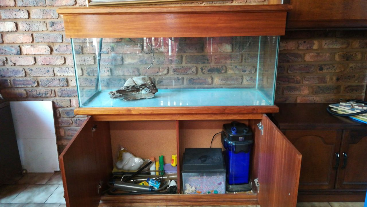 Fish or reptile tank in wooden cabinet