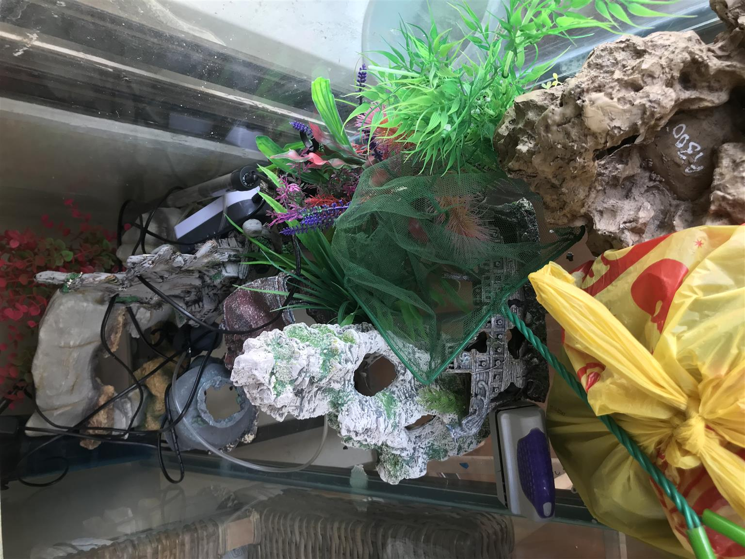 a variety of fish tank ornaments heater and pump