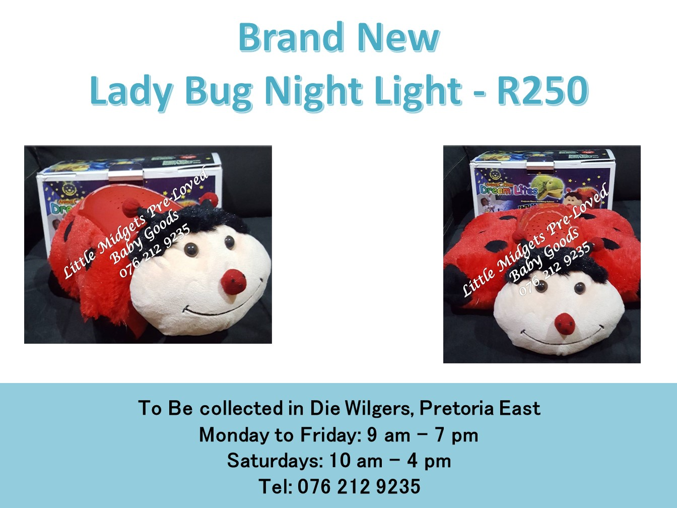 Brand New Lady Bug Night Light