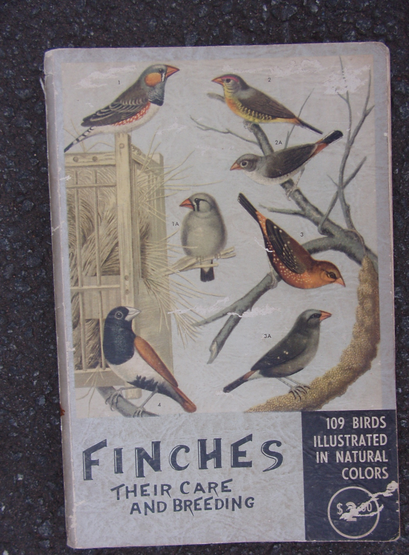 Finches: Their Care and Breeding Paperback – 1955 - by M L & Flora Flowers