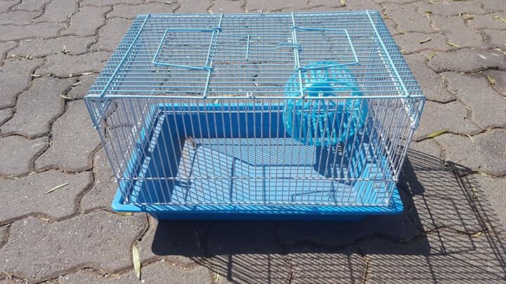 hamster cages