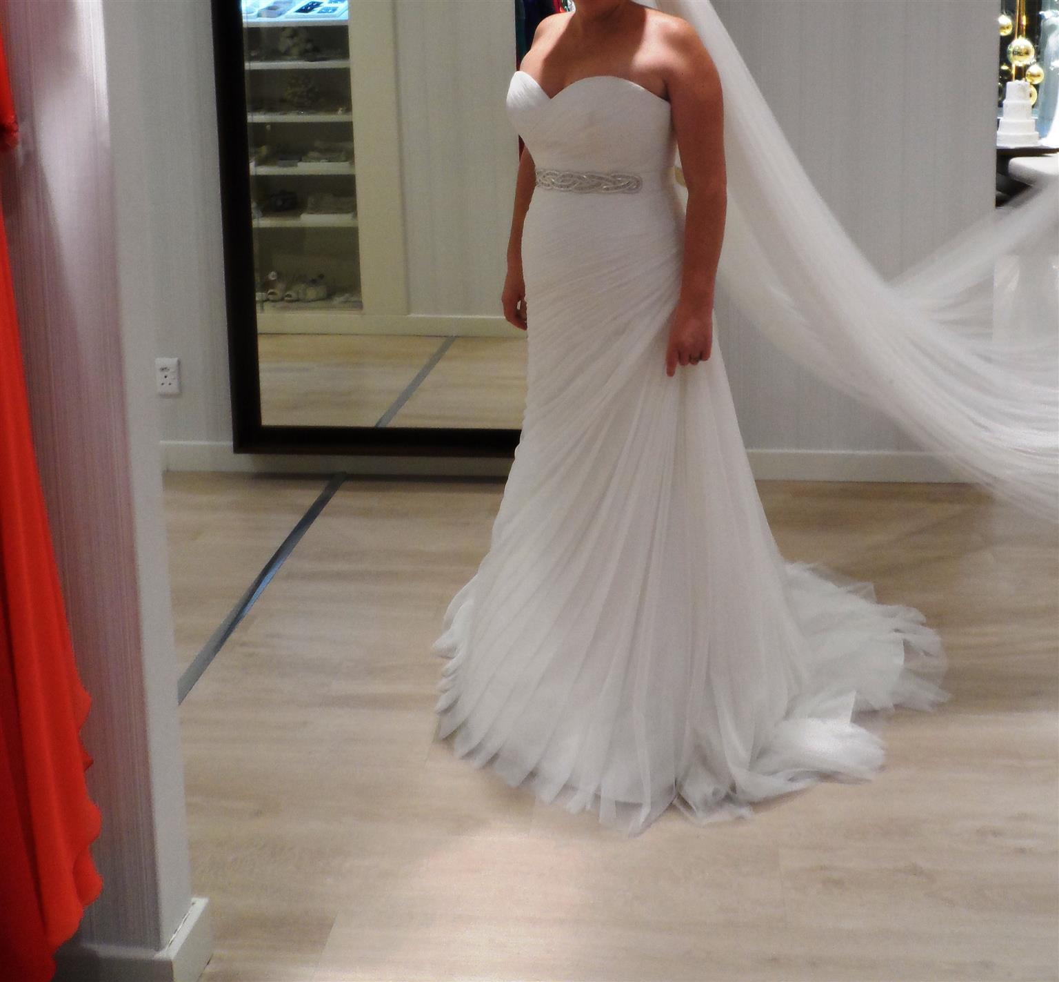 Beautiful Ivory mesh wedding dress - Pronovias Couture model. size 38-40