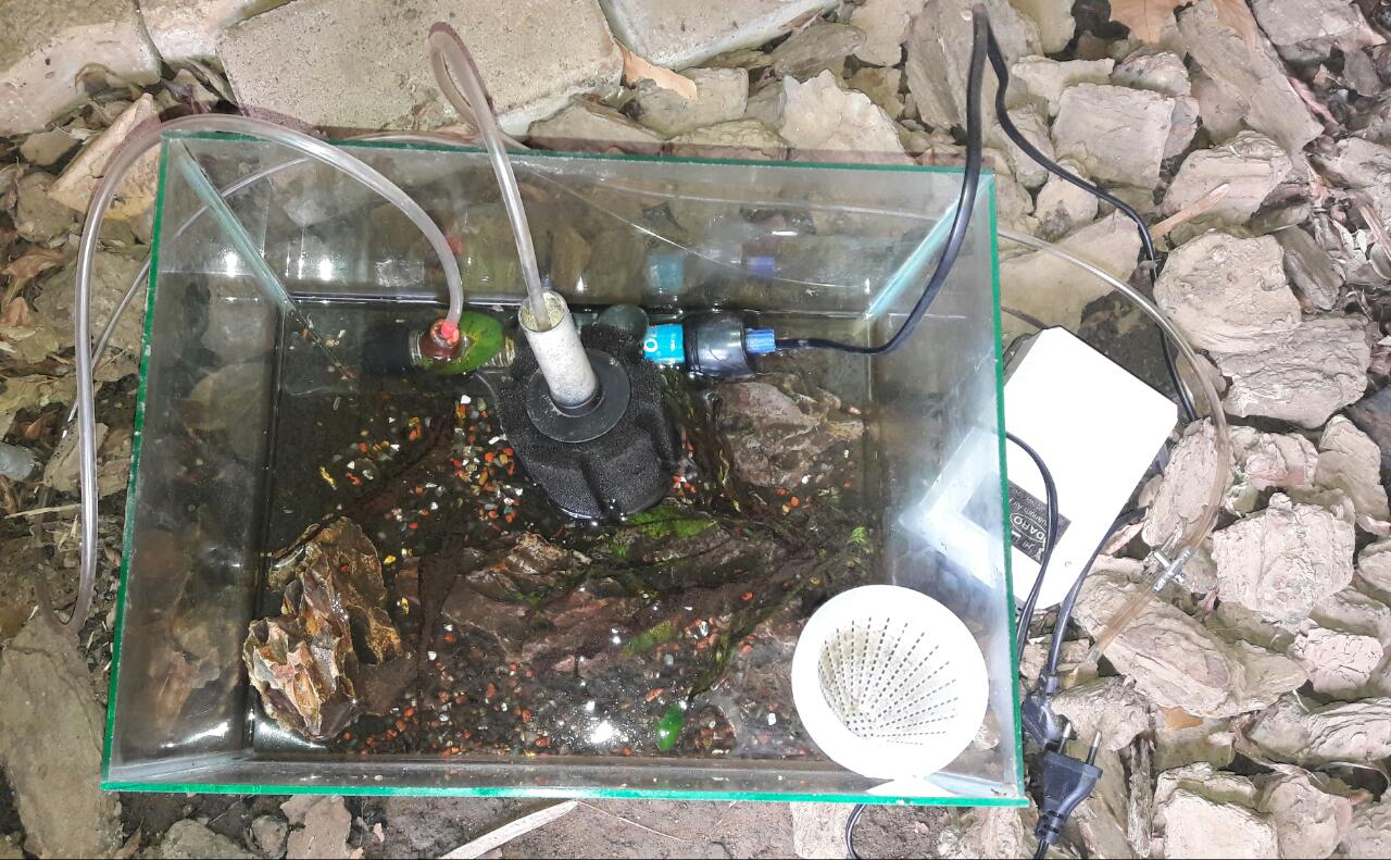 FISH TANK WITH ACCESSORIES FOR SALE!!!