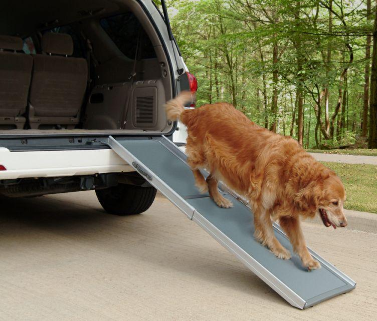 Telescoping car access ramp