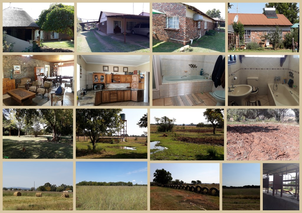 Smallholding for sale