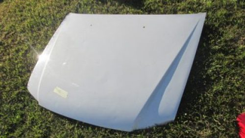 2010 Tata xenon bonnet