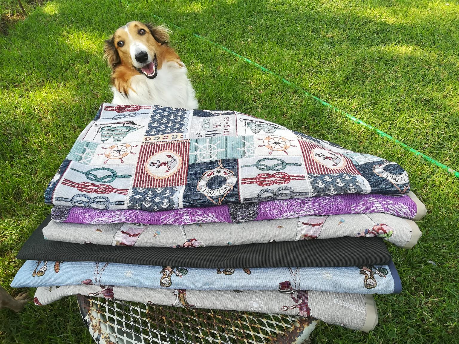 Car dog covers for sale Take your dog with you!