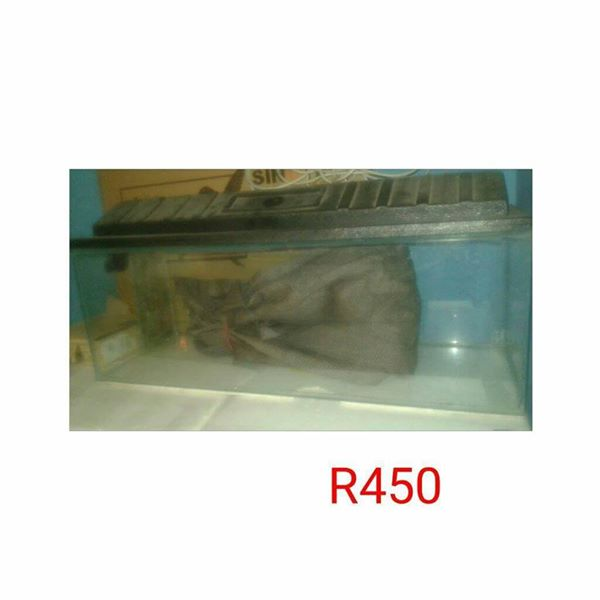 Fish tenk for sale