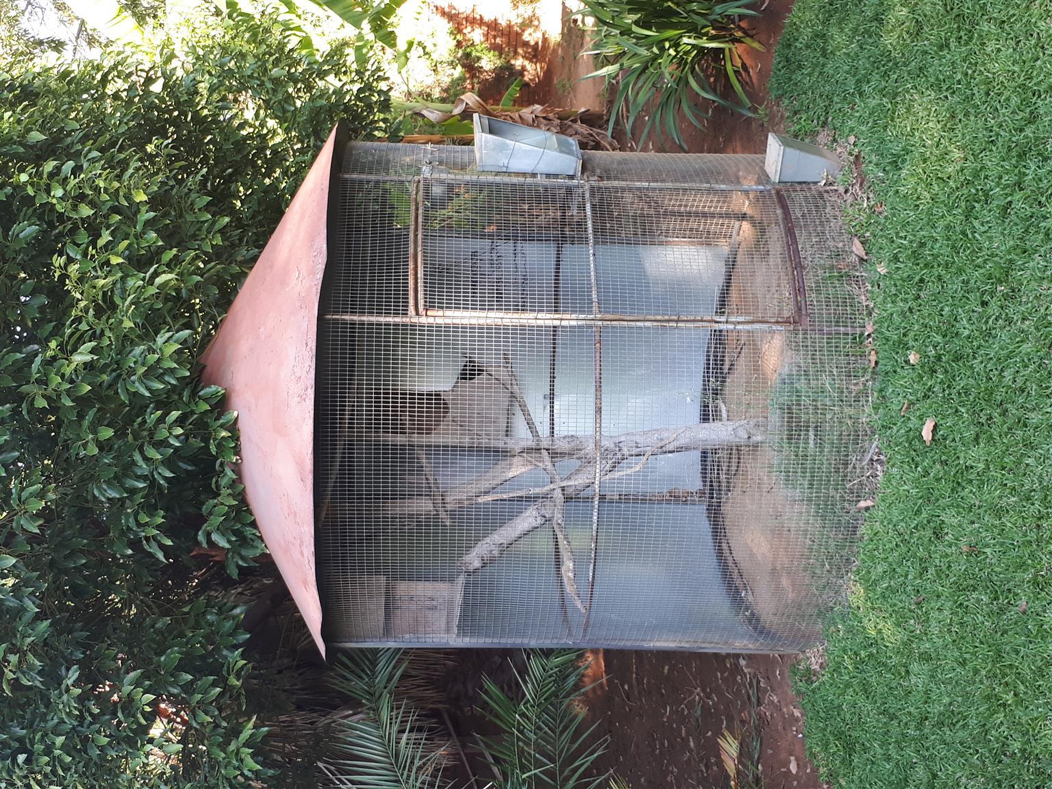 Large birdcage