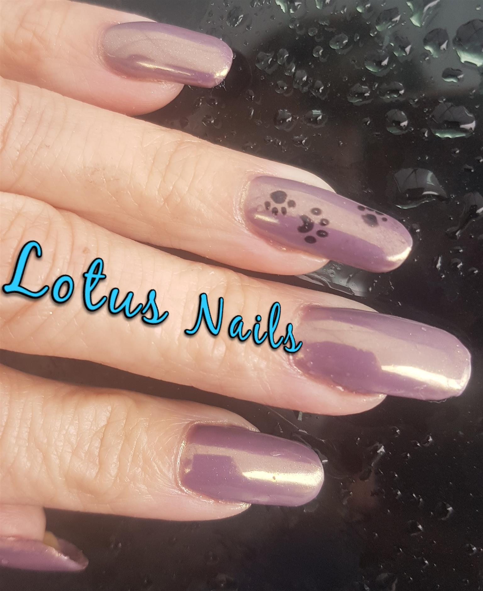 Alberton Lotus nails Acrylic gel and gel polish - nails and toes ...