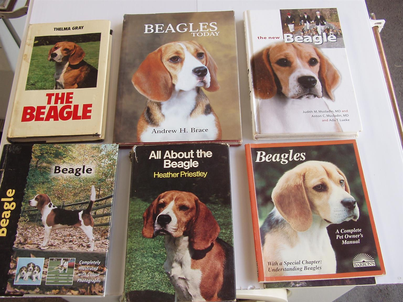 Beagle Books - Collection of 6 books - Hard cover in good condition
