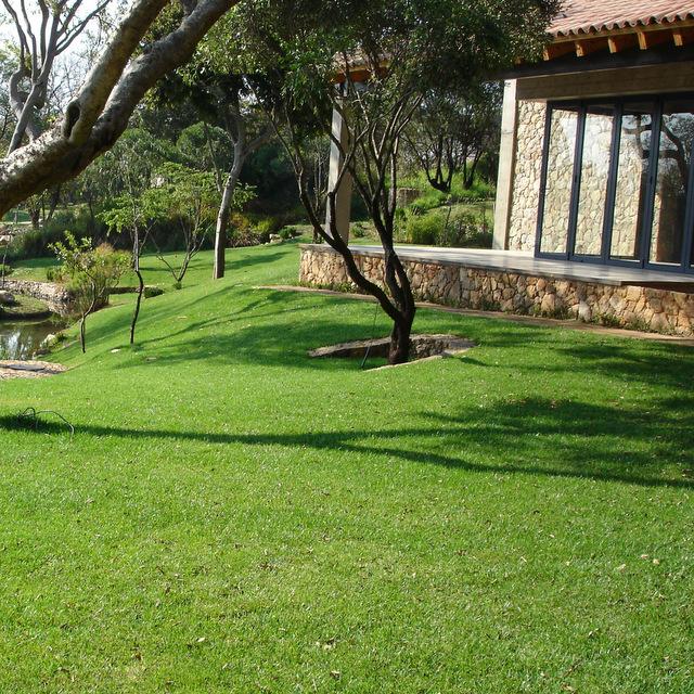 Instant Grass   Instant Lawn   Quality Grass   Gauteng