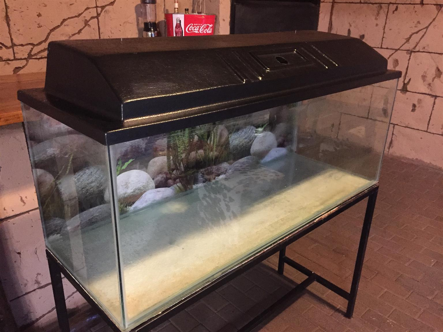 4ft fish tank includes stand, canopy and light
