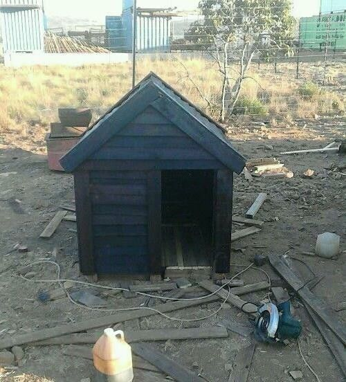 African Dog Kennels