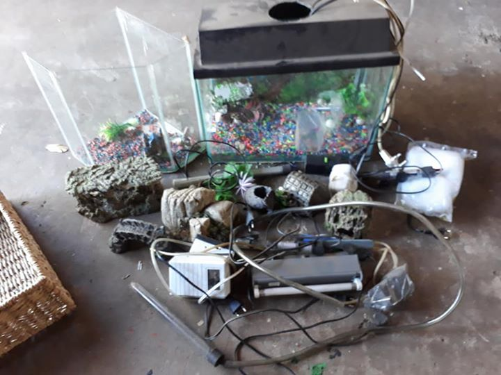 Fishtank with loads of accesories