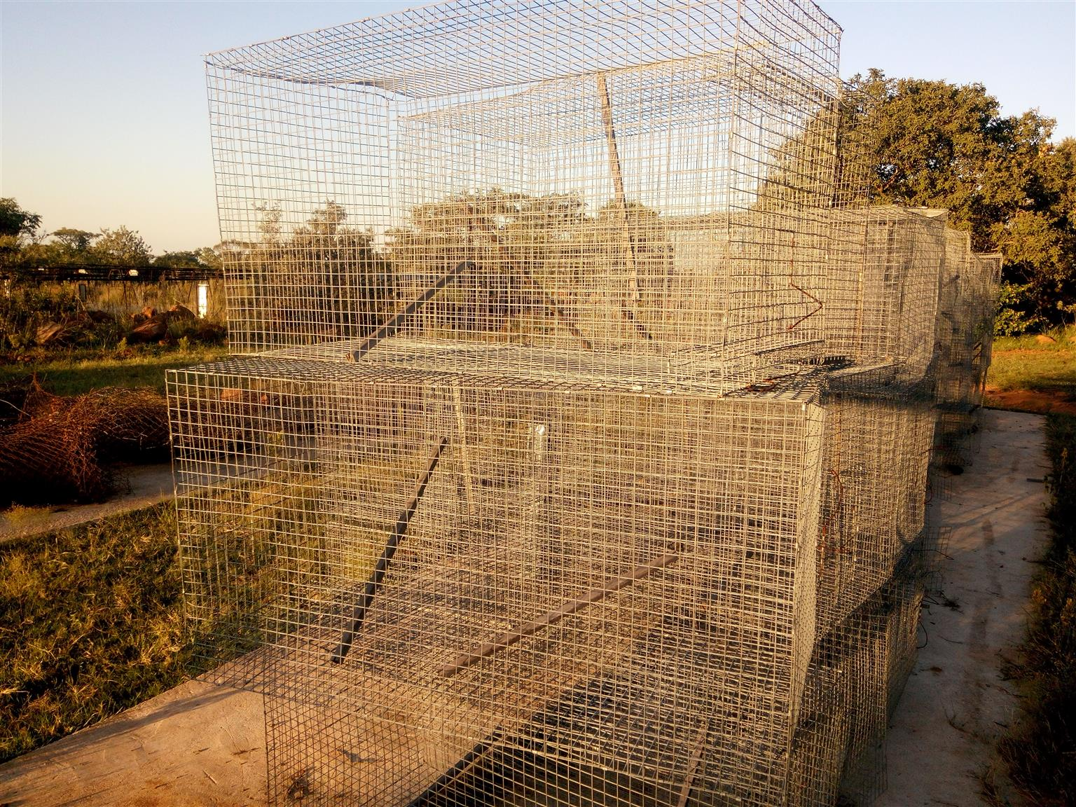 900x600x600 hanging cages