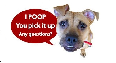 We scoop doggies poop for a living