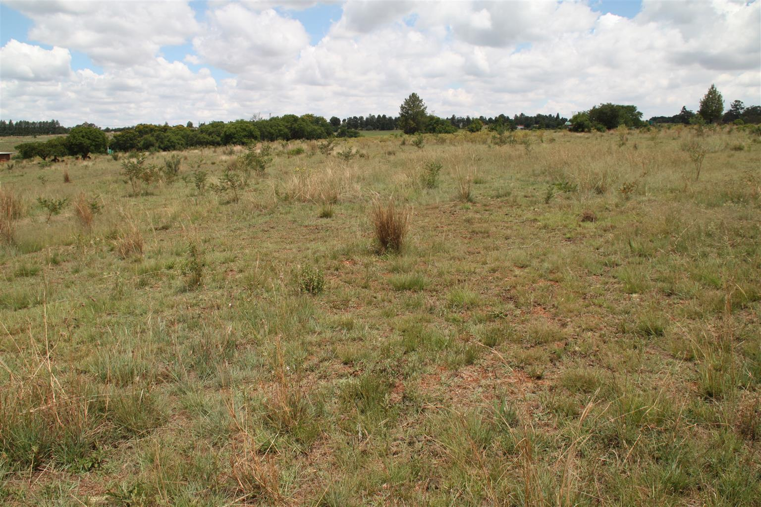 9.5 hectare plot for sale in Tiegerpoort Pretoria East