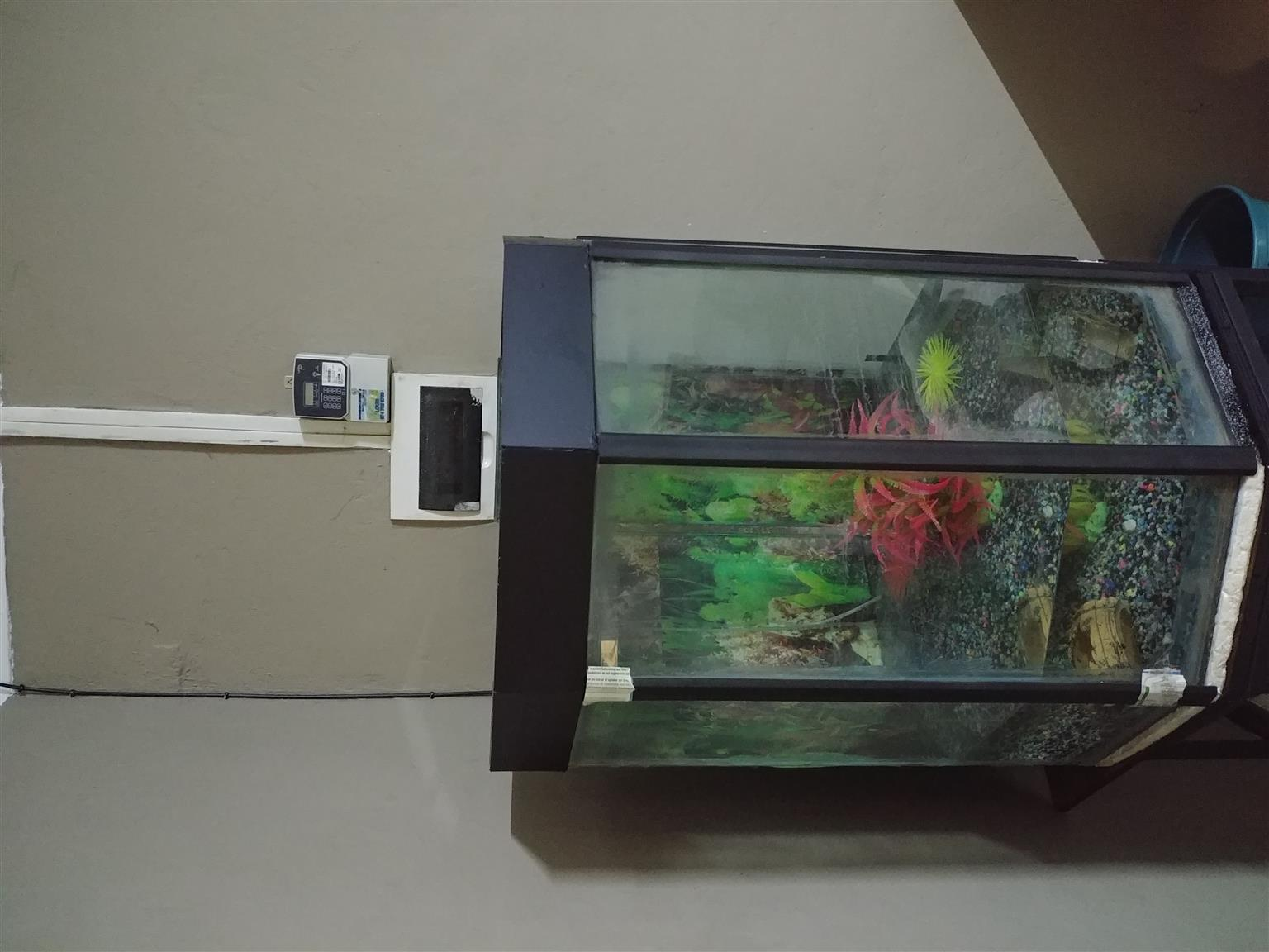 Corner Fish tank big with stand R2000