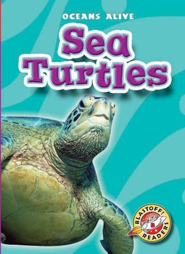 Oceans Alive Eels | Penguins | Sea Turtles